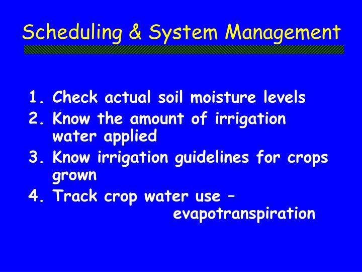 Scheduling & System Management