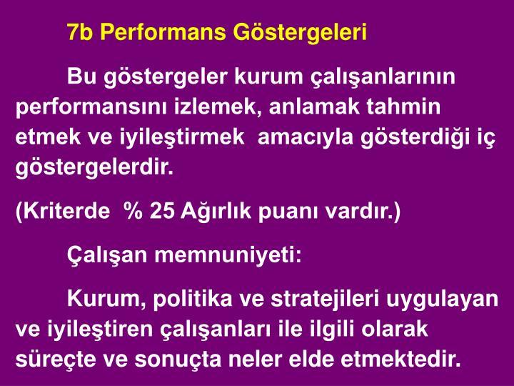 7b Performans Göstergeleri