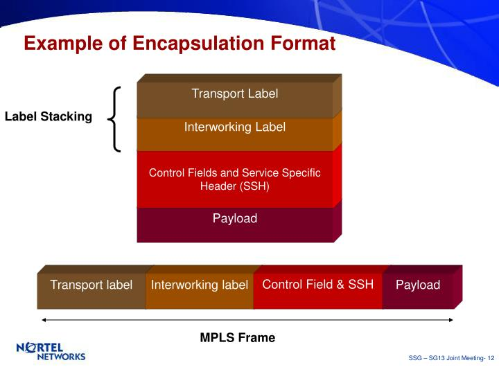 Example of Encapsulation Format