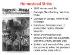 homestead strike
