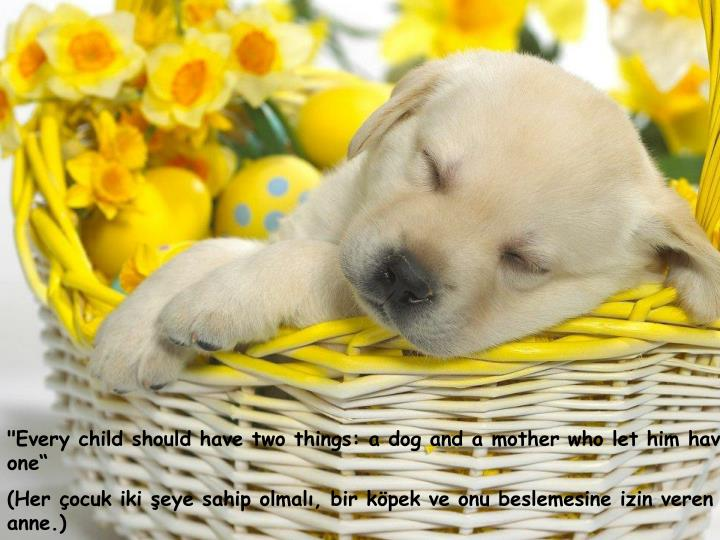"""Every child should have two things: a dog and a mother who let him have one"""