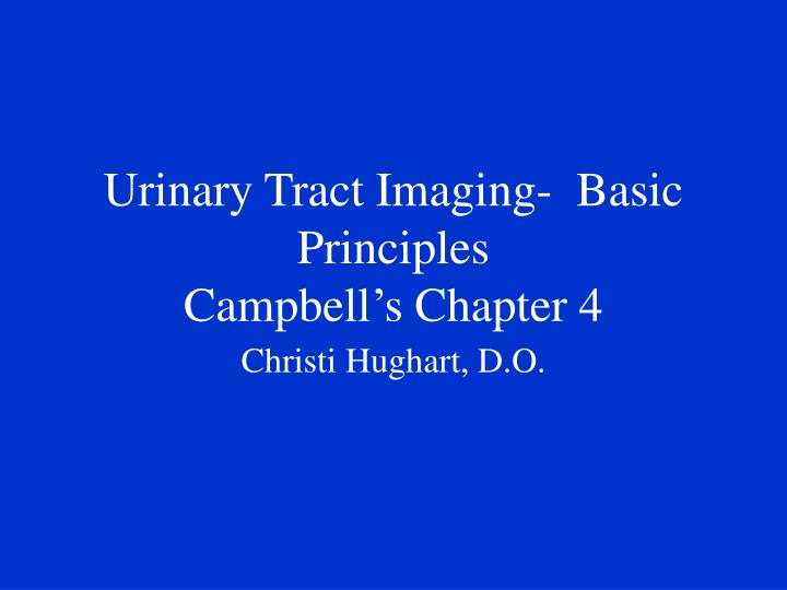 Urinary tract imaging basic principles campbell s chapter 4