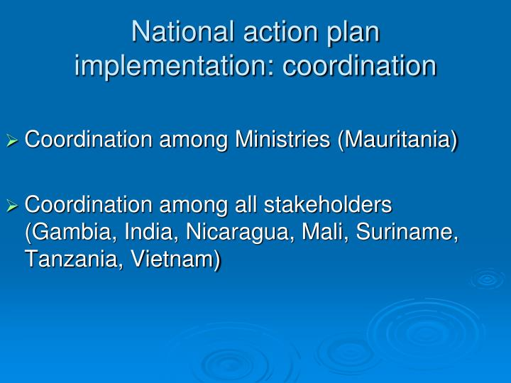 National action plan implementation: coordination