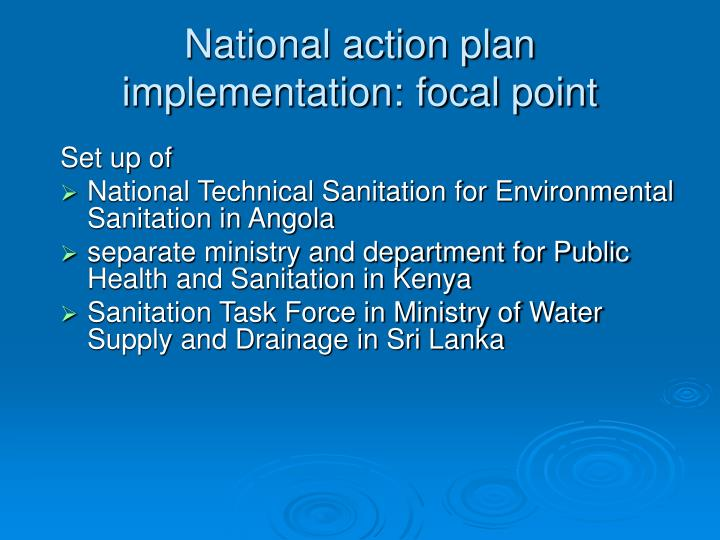 National action plan implementation: focal point
