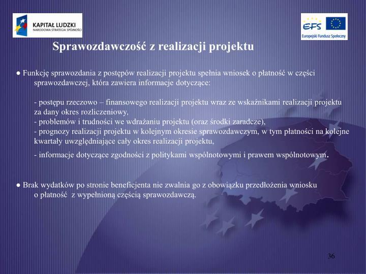 Sprawozdawczość z realizacji projektu