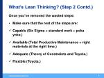 what s lean thinking step 2 contd
