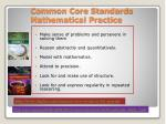 common core standards mathematical practice
