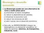 bioenerg a y desarrollo sustentable