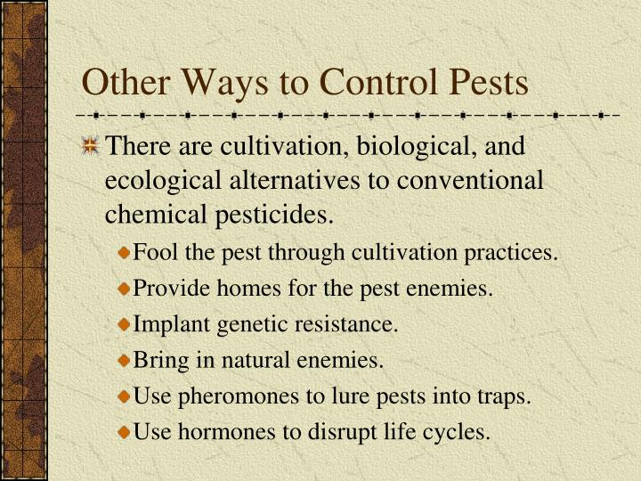 Other Ways to Control Pests