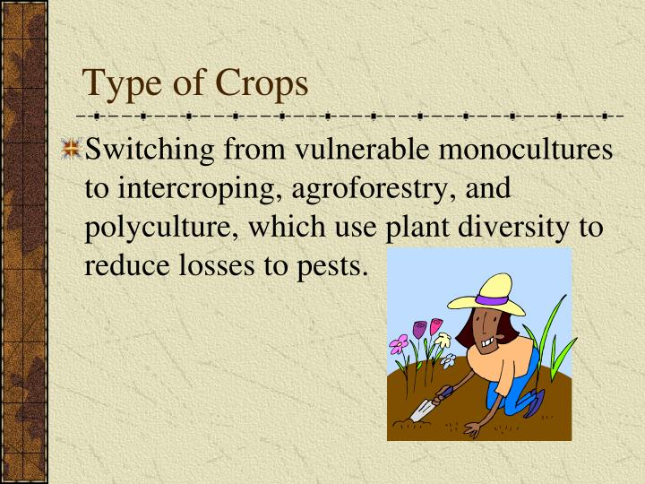 Type of Crops