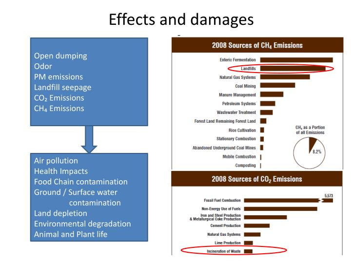 Effects and damages