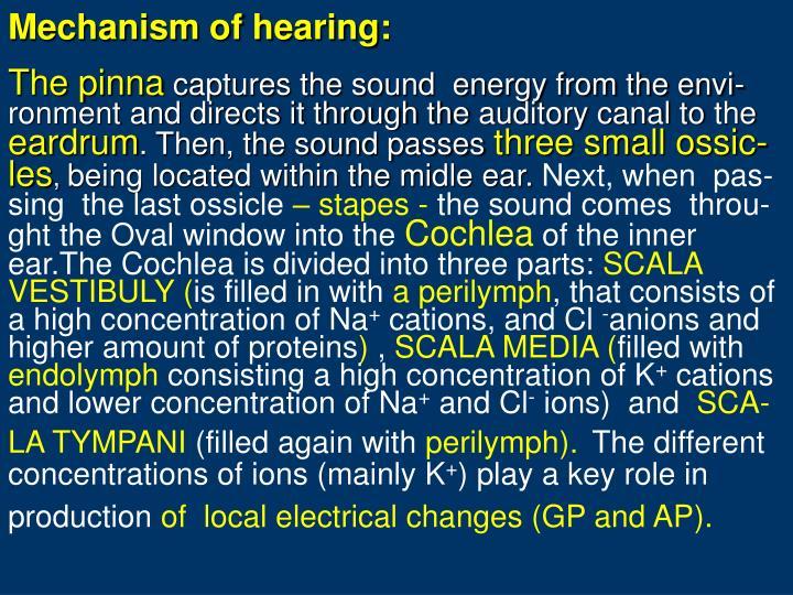 Mechanism of hearing: