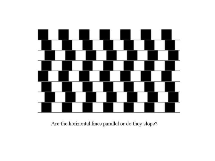 Are the purple lines straight or bent