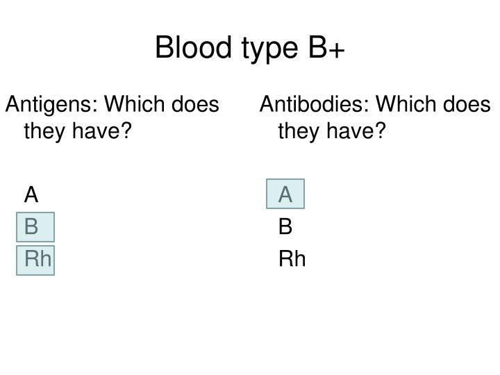 Blood type B+
