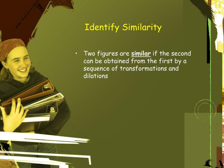 Identify similarity