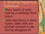 5 stratified squamous epithelium