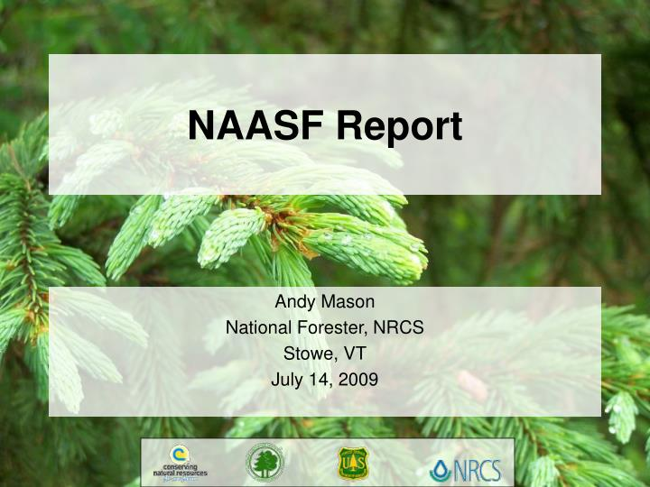 Naasf report