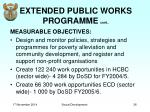 extended public works programme cont