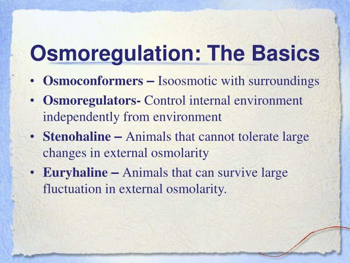 Osmoregulation the basics
