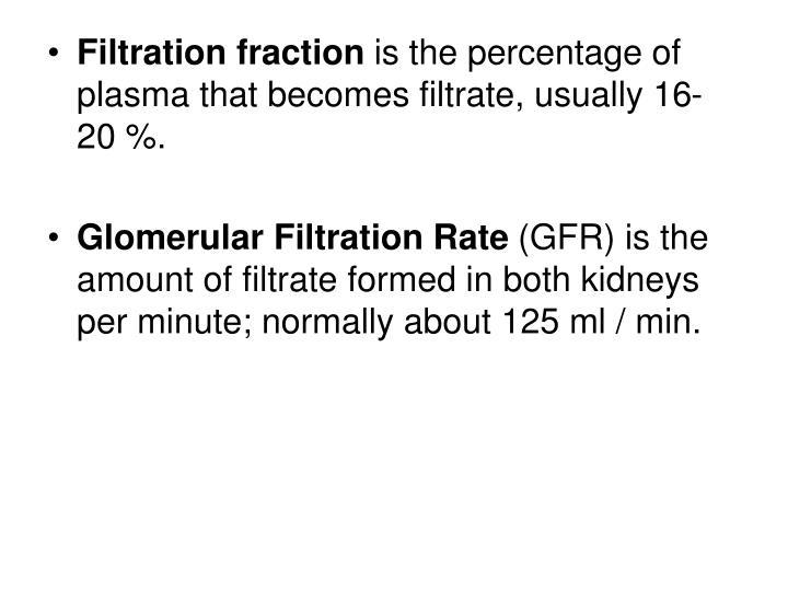 Filtration fraction
