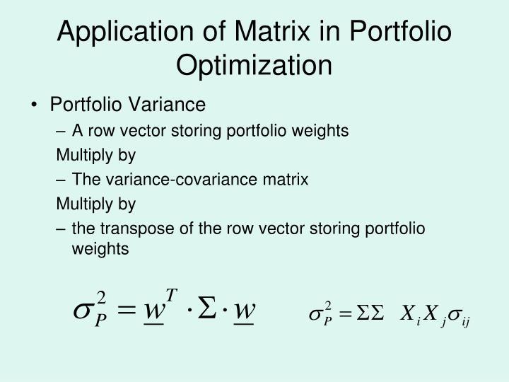 Application of Matrix in Portfolio Optimization