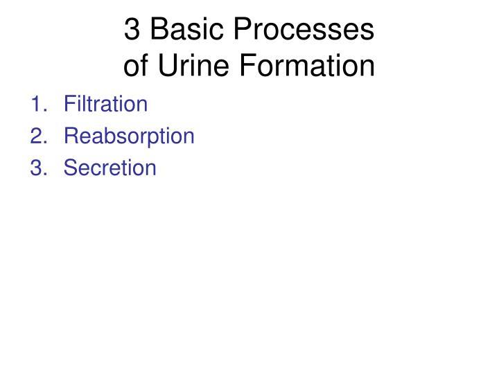3 Basic Processes