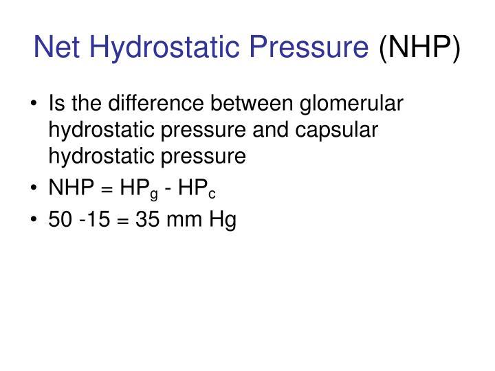 Net Hydrostatic Pressure