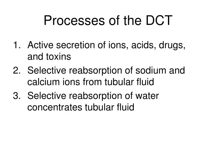 Processes of the DCT