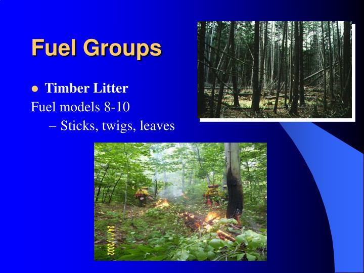 Fuel Groups