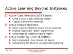 active learning beyond instances