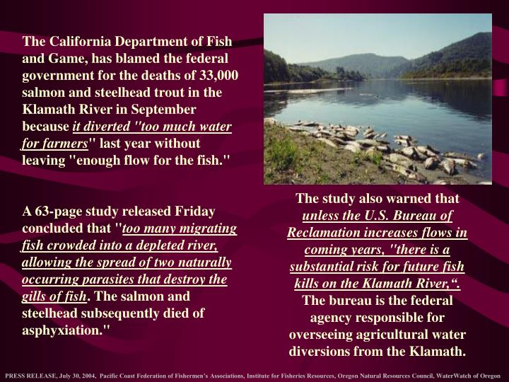 The California Department of Fish and Game, has blamed the federal government for the deaths of 33,000 salmon and steelhead trout in the Klamath River in September because
