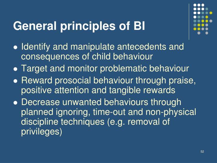 General principles of BI