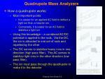 quadrupole mass analyzers1