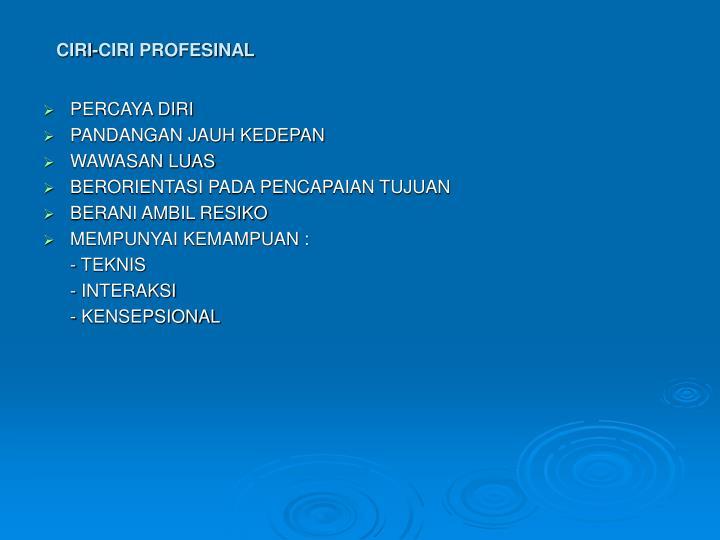 CIRI-CIRI PROFESINAL