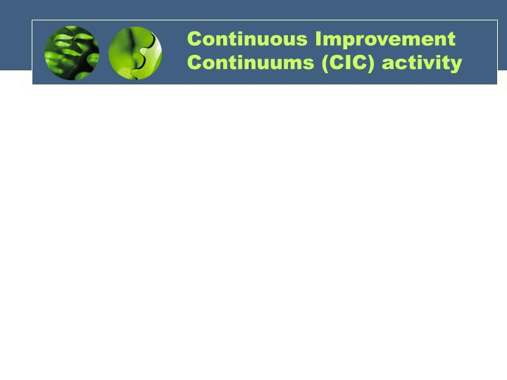 Continuous Improvement Continuums (CIC) activity
