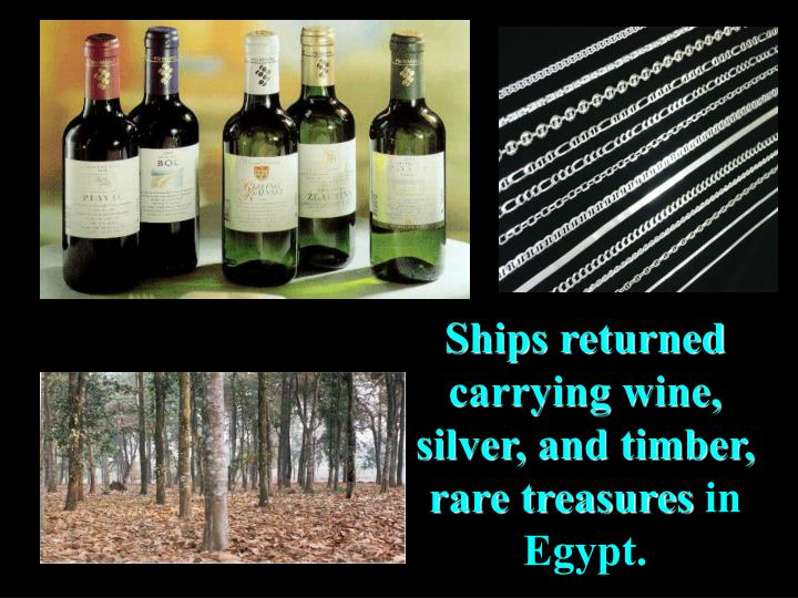 Ships returned carrying wine, silver, and timber, rare treasures