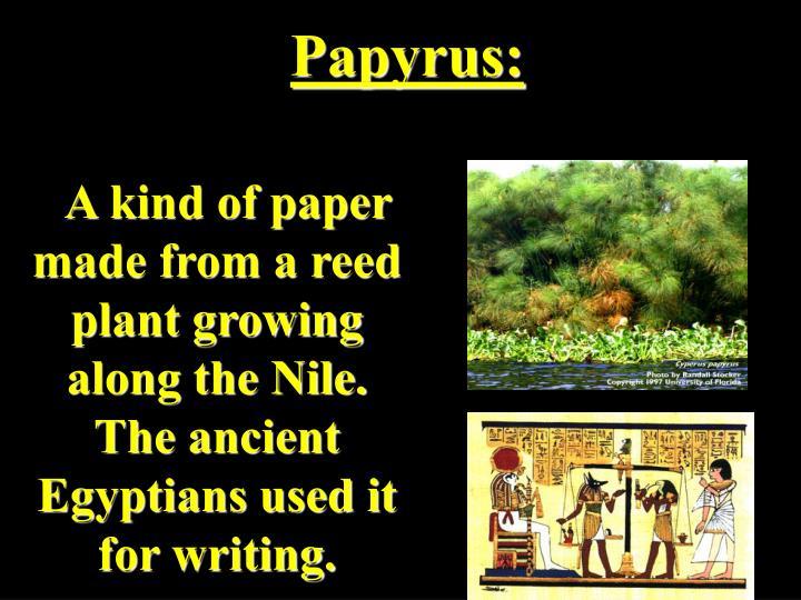 Papyrus: