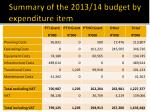 summary of the 2013 14 budget by expenditure item