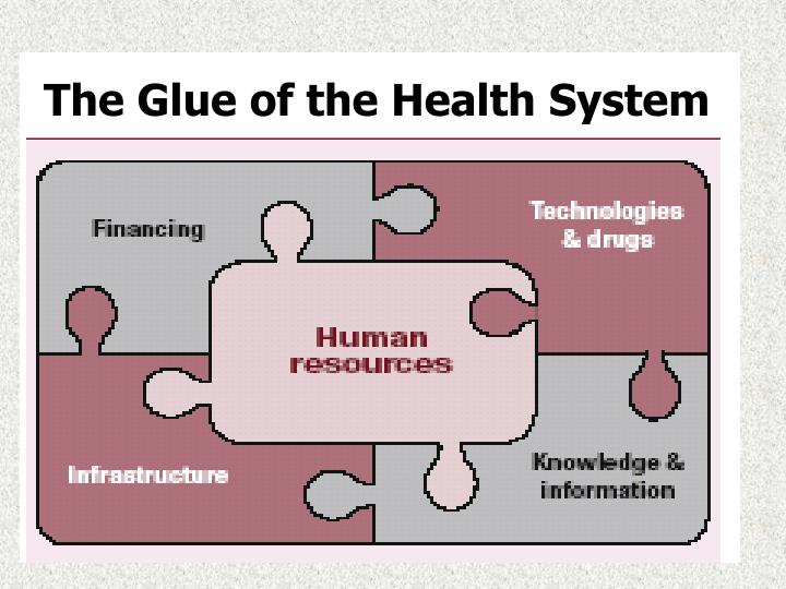 The Glue of the Health System