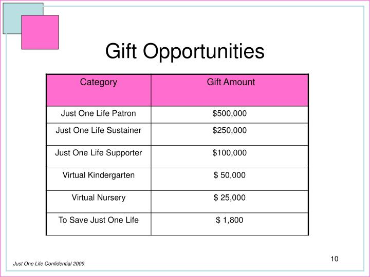 Gift Opportunities
