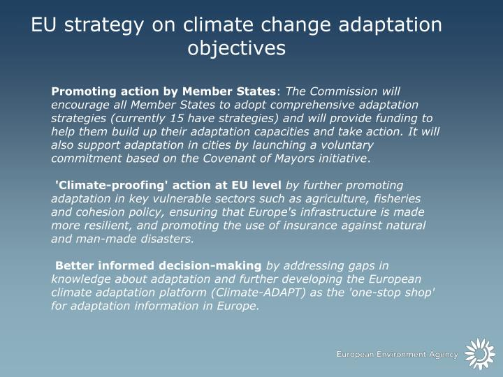 EU strategy on climate change adaptation objectives