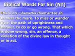 biblical words for sin nt