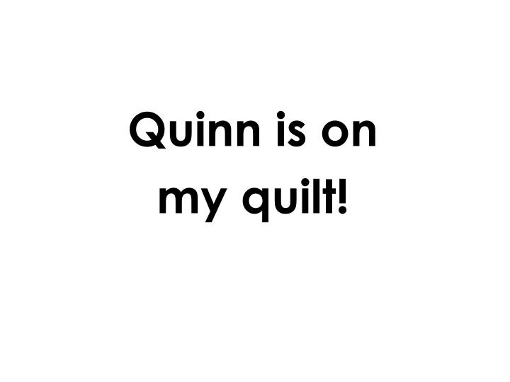 Quinn is on
