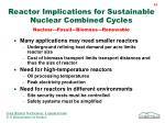 reactor implications for sustainable nuclear combined cycles nuclear fossil biomass renewable