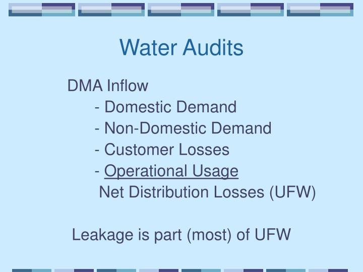 Water Audits