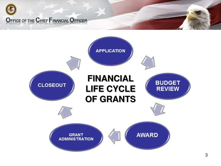 Financial life cycle of grants
