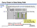 carry chain in data delay path