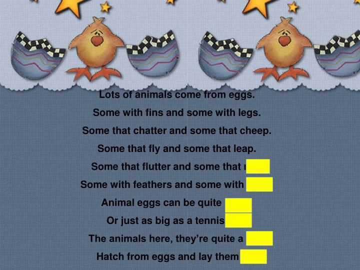 Lots of animals come from eggs.