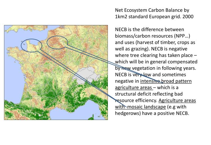 Net Ecosystem Carbon Balance by 1km2 standard European grid. 2000
