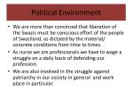 political environment3